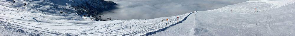 Skidorientering